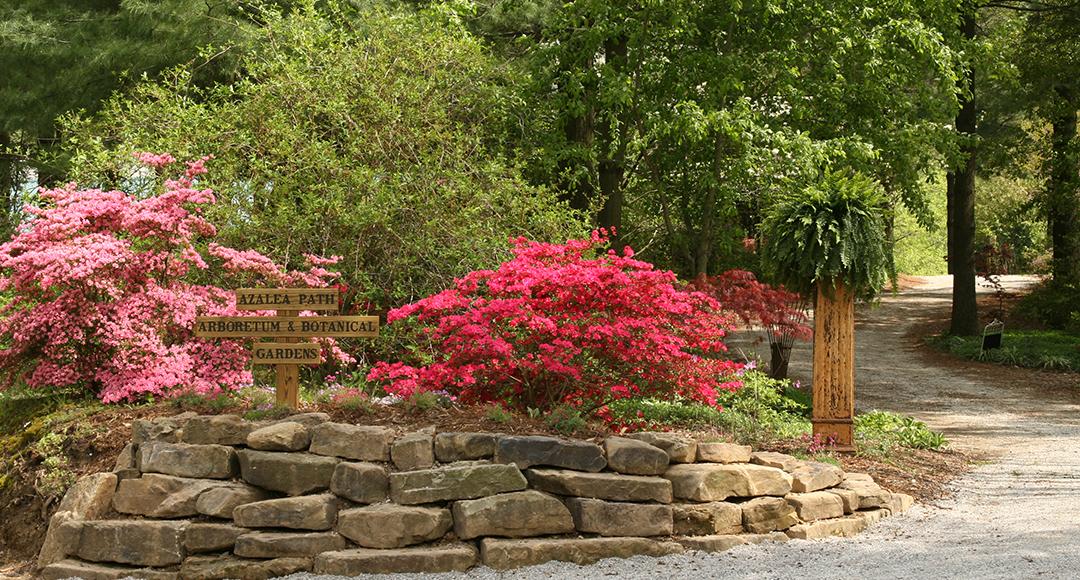Azalea Path Arboretum & Botanical Gardens photo