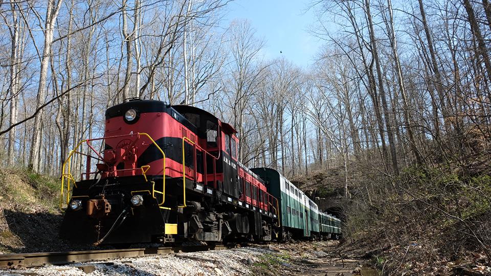 Scenic Train Ride photo