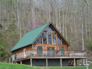 Vinnie's  River Cabins photo
