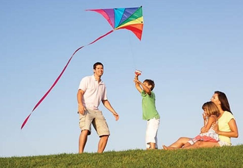 Into the Wind Kite Festival photo